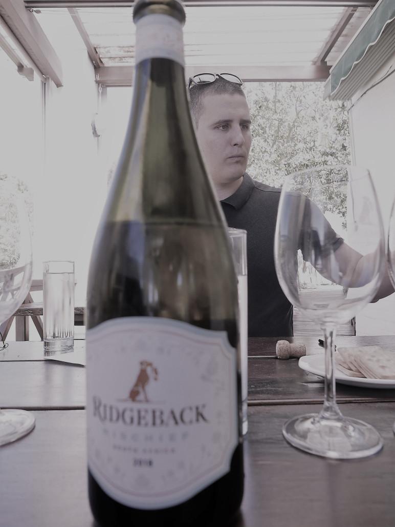lion hound wijnproeverij zuid-afrikaanse wijn
