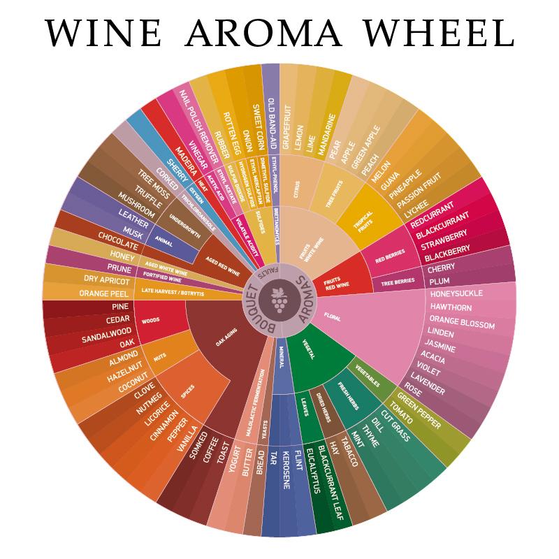 wijn aroma wiel geurgroepen wijn