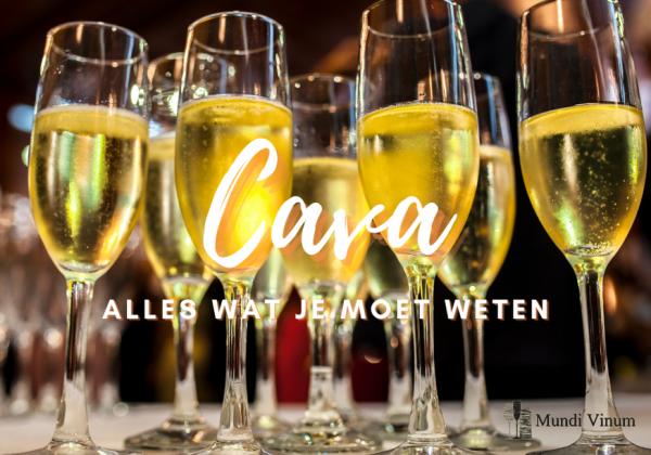 : Wil je weten wat Cava precies is? In deze blogpost vind je meer informatie over deze Spaanse mousserende wijn!